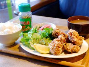 Fried-chicken-plate-1